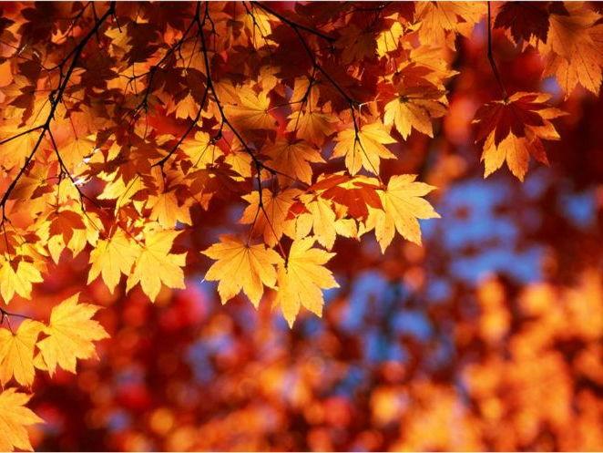 'Ode to Autumn' PPT - John Keats