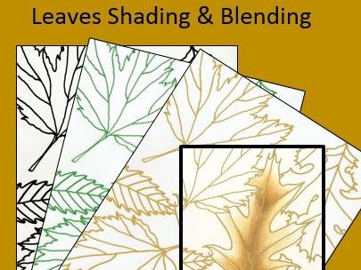 Leaves Shading and Blending Lesson