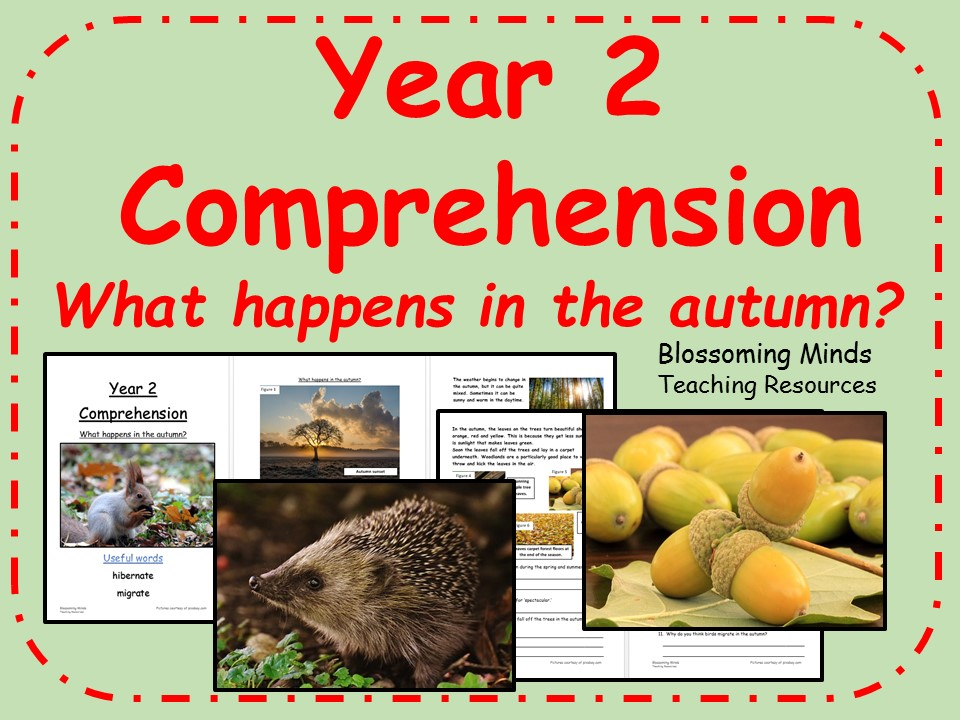 Year 2 non-fiction comprehension - What happens in the autumn?