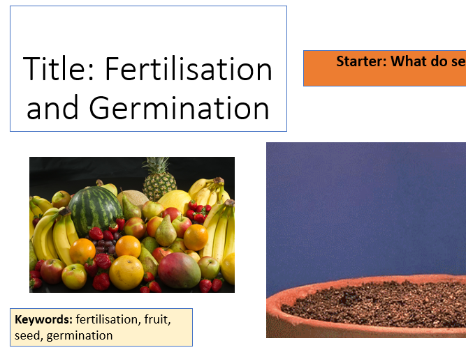 AQA Activate 1 KS3 Fertilisation and Germination