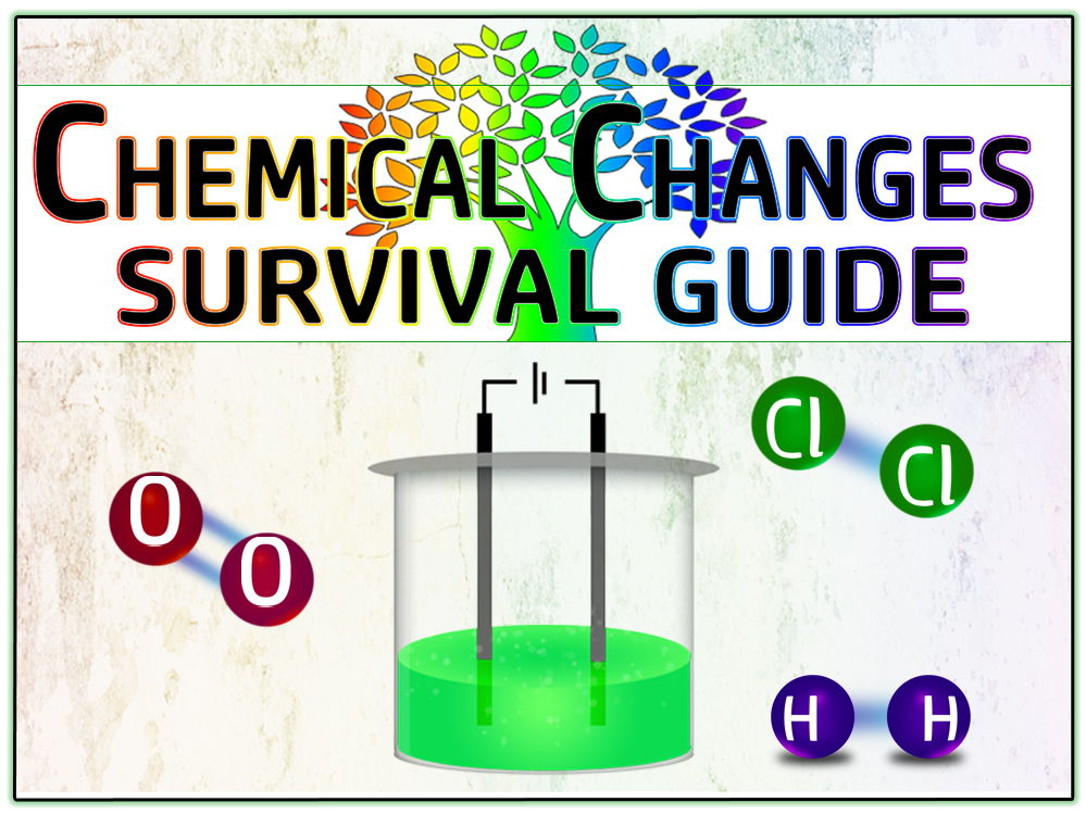 Chemical Changes (Acids, Alkalis and Electrolysis) Survival Guide