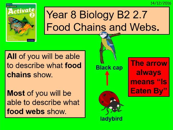 """A digital version of the Year 8 Biology B2 2.7 """"Food Chains and Food Webs"""" lesson."""