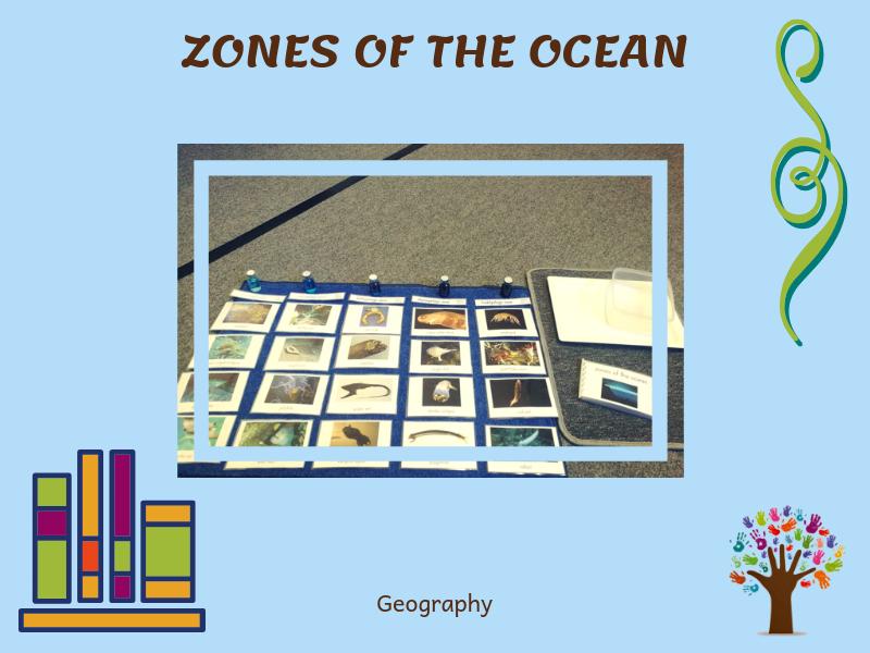 Ocean Zones (Discussion Cards)