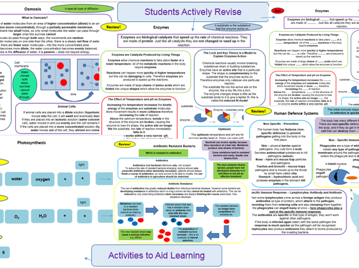 Cells, Organisation, Infection and Response, Bioenergetics, Homeostasis, Inheritance, Variation, Evolution, Ecology, Summary of Whole of Biology AQA 9-1 GCSE as Active Revision Cards and Activities for Learning