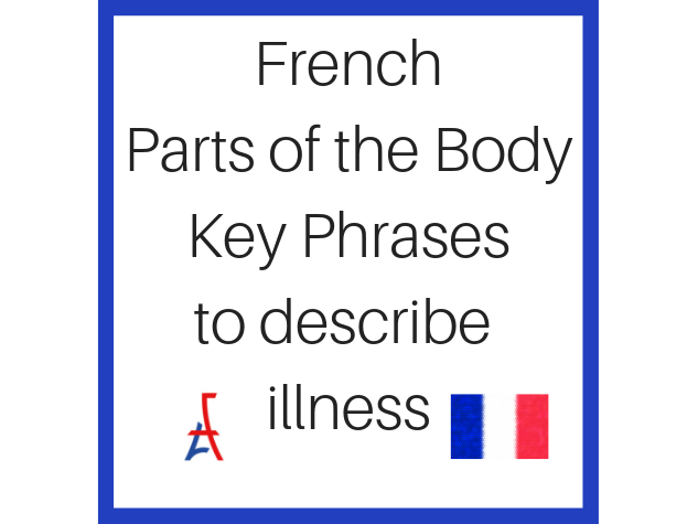 Handy French Phrases for Health - Parts of the Body