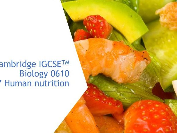 Cambridge IGCSE Biology 0610, 7 Human nutrition