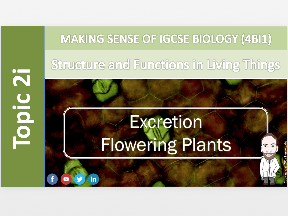 IGCSE Biology 9-1 - 2i Excretion - Flowering Plants