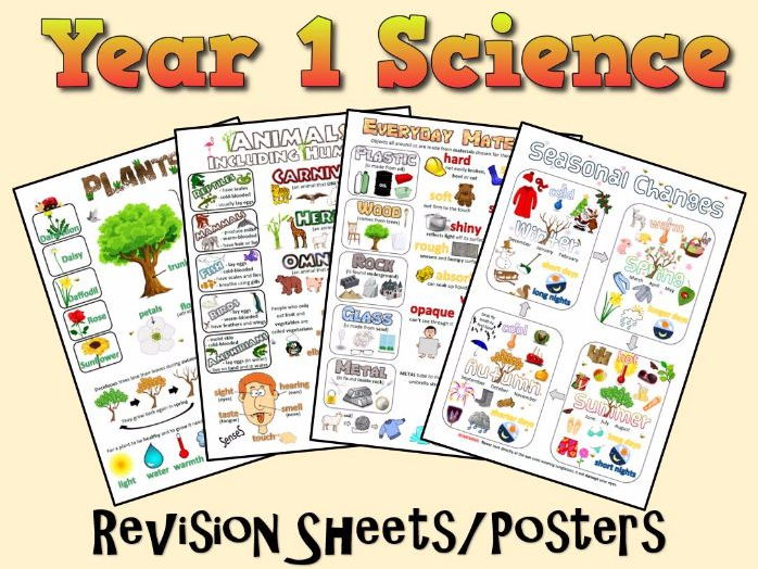 Year 1 Science Posters/Revision Sheets