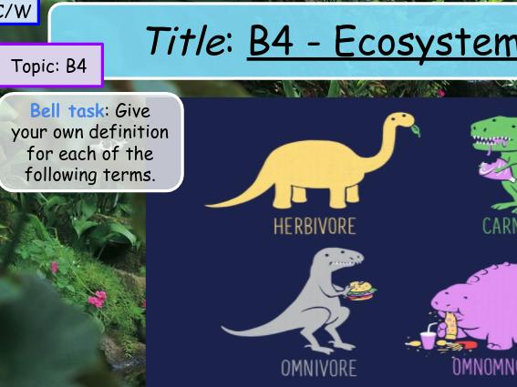 Ecosystems GCSE