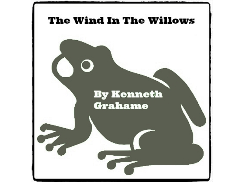 The Wind In The Willows * (Reed Novel Studies)