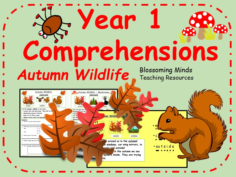Year 1 non-fiction comprehensions - Autumn wildlife