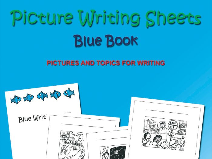 Picture Writing Sheets: Blue Book