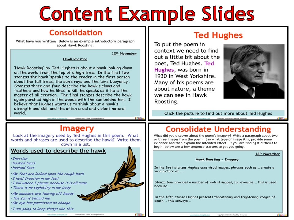 hawk roosting by ted hughes  powerpoint and worksheets  by