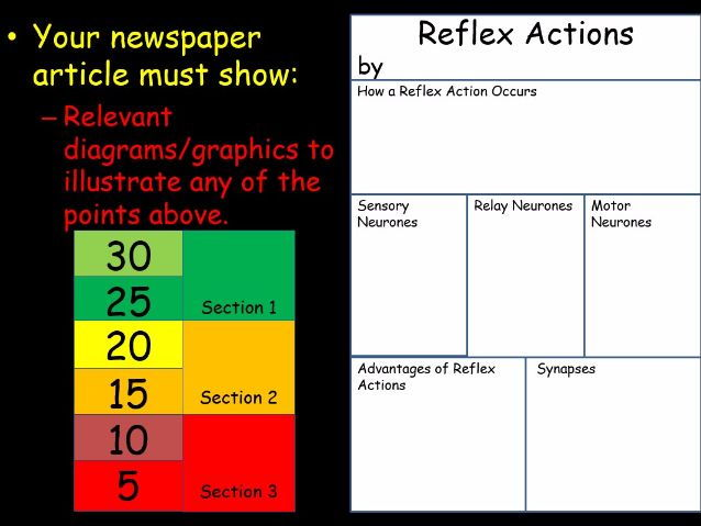 Reflexes research producing a newspaper page