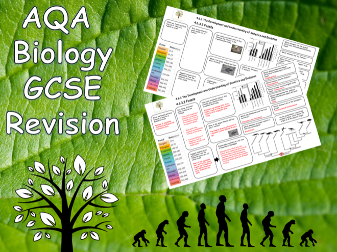 4.6.3/4 Genetics & Evolution and Classification- AQA Science Trilogy (Biology) Revision with Answers