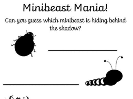 Minibeast Mania (matching game)