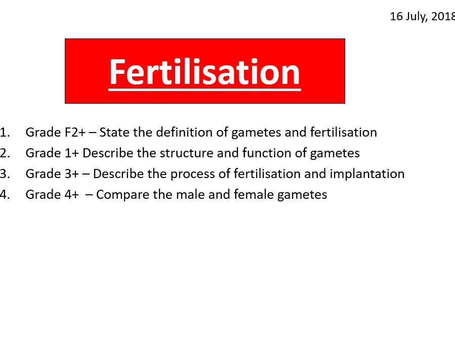 Fertilisation and implantation
