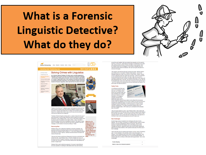 Lingusitic Detectives FULL Scheme (15+ Lessons) with assessments and resources