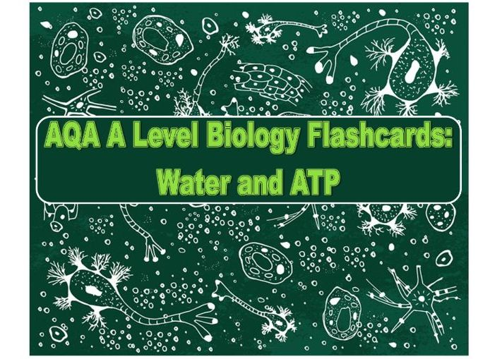 Flashcards AQA Water and ATP A Level Biology