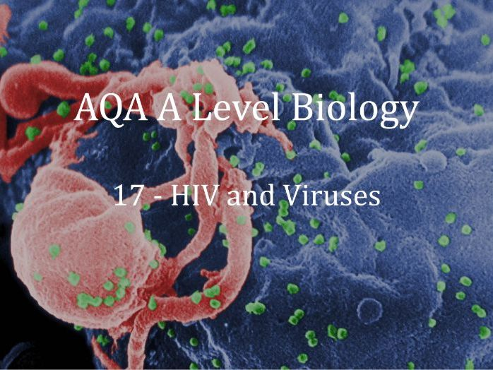 AQA A Level Biology Lecture 17 - HIV and Viruses