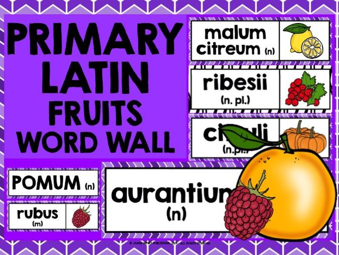 PRIMARY LATIN FRUITS WORD WALL