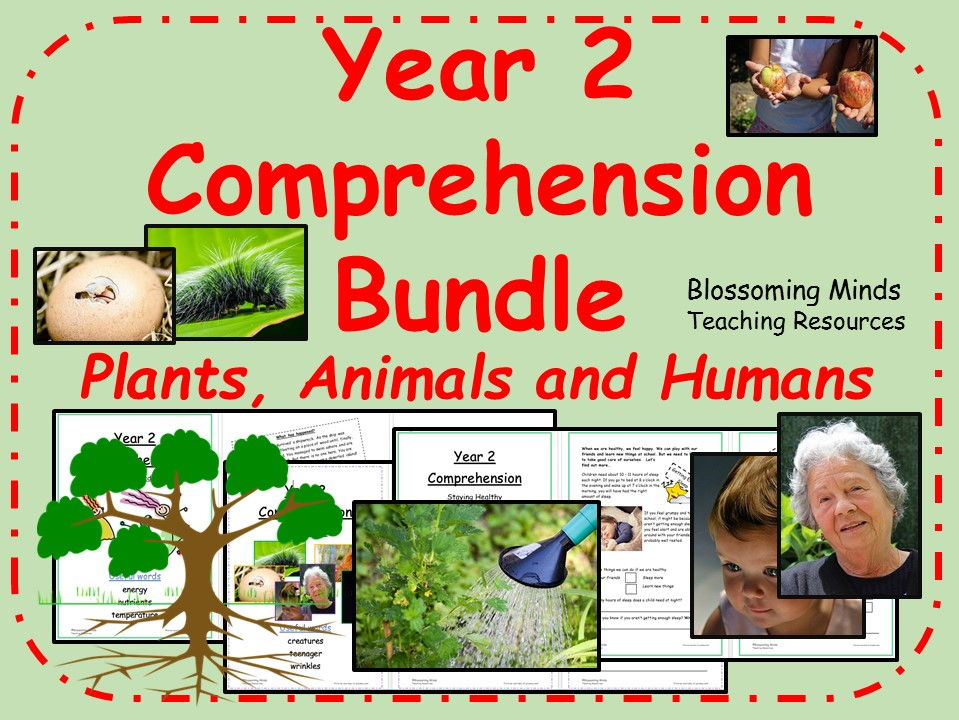 Year 2 Reading Comprehension Pack - Plants, Animals and Humans