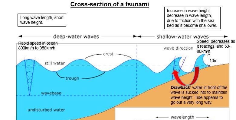 A Level; earthquake case study- the Sendai /Japanese tsunami