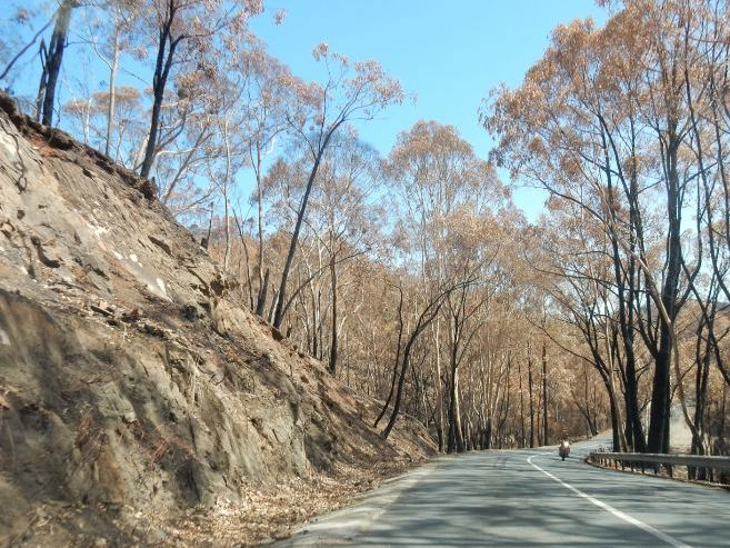 THE CATASTROPHIC BUSH FIRES IN SOUTH AUSTRALIA - PART 1 - THE ADELAIDE HILLS