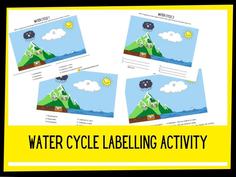 Label the water cycle | KS2 | Changes of State