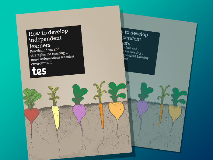 How to develop independent learners e-book