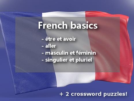 French basics: ÊTRE et AVOIR, ALLER, singulier et pluriel, masculin et féminin