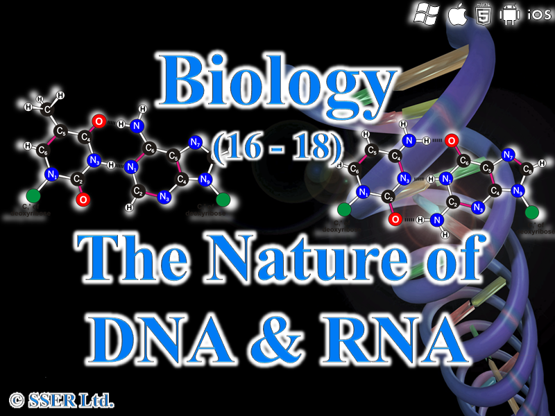 3.1.5.1 The Nature of DNA and RNA