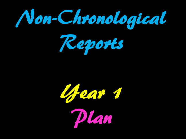 Non-Chronological Report Year 1