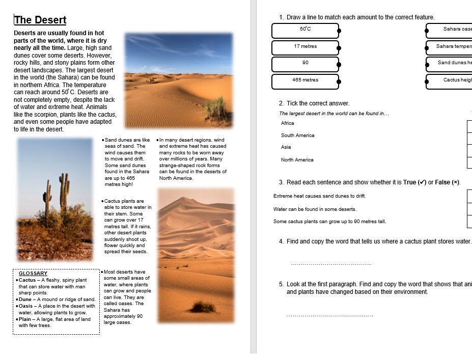 The Desert - KS2 Primary Reading Comprehension National Test Style Sample Questions