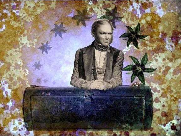 Charles Darwin's Vasculum