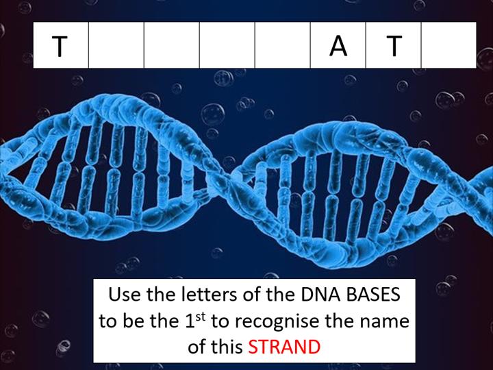 Transcription (AQA A-level Biology)