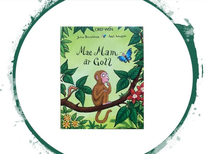 Monkey Puzzle - Mae Mam ar Goll - Julia Donaldson