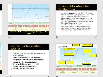 Neuronal communication entire topic OCR A LEVEL MODULE 5: COMMUNICATION, HOMEOSTASIS AND ENERGY
