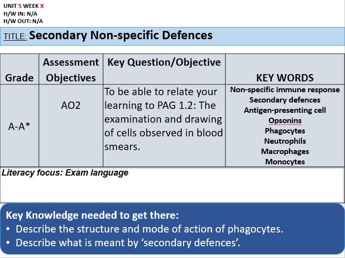 4.1 Secondary NS Defences (OCR AS)