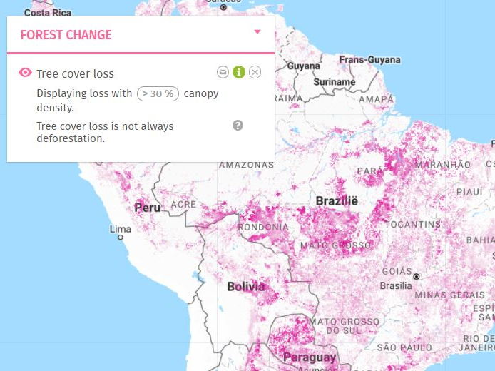 Discover deforestation using Global Forest Watch, GIS