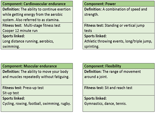 GCSE PE OCR 9-1 Components of fitness revision flash cards