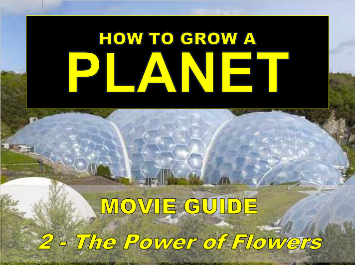 How to Grow a Planet: THE POWERS OF FLOWERS (Video worksheet)