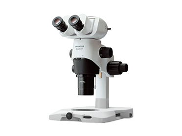 A Level Biology - Types of Microscopes