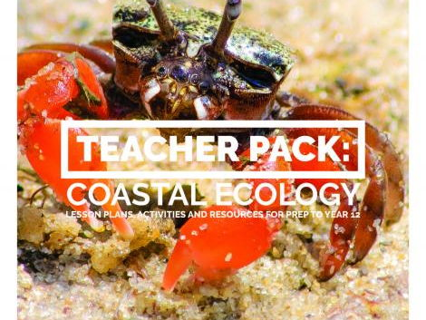 Teacher Pack: Coastal Ecology