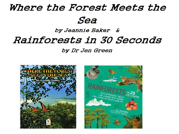 Rainforest Year 4  Non-Chronological report unit -  Where the forest meets the sea/ Rainforest in 30