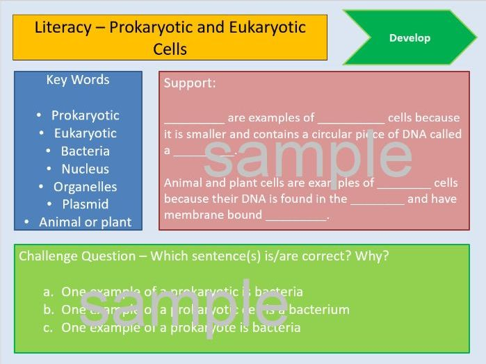 AQA Biology Cells Literacy AfL Differentiated GCSE Science