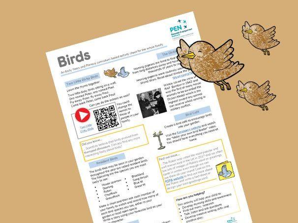 Birds. An Early Years, KS1 & KS2 Family Home Learning Sheet.