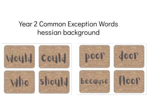 Year 2 Common Exception Words Flash Cards