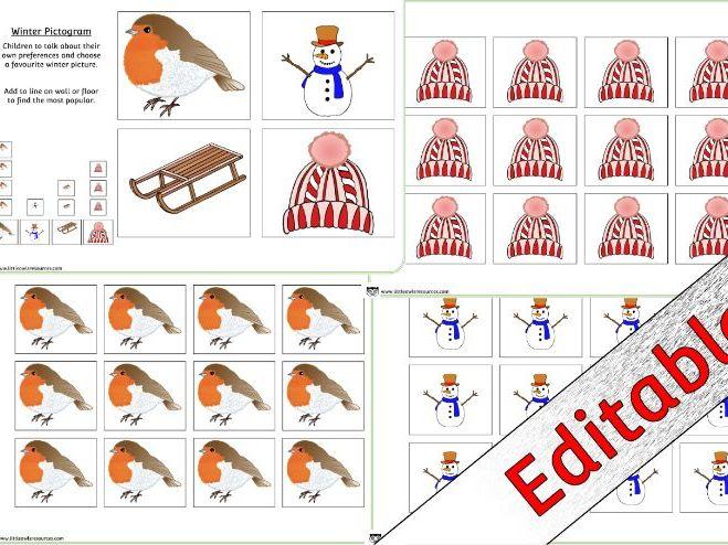 WINTER Pictogram Activity/Display - EDITABLE