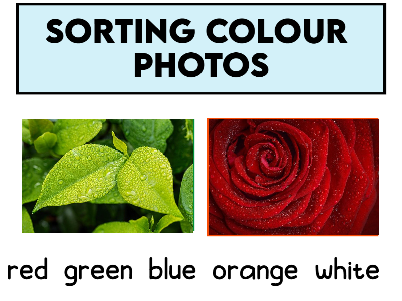 5 Sets of Colour Photos to Cut and Sort